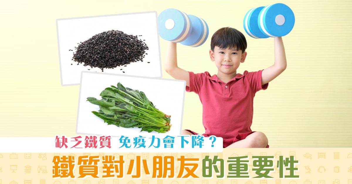 健康資訊-鐵質-補鐵