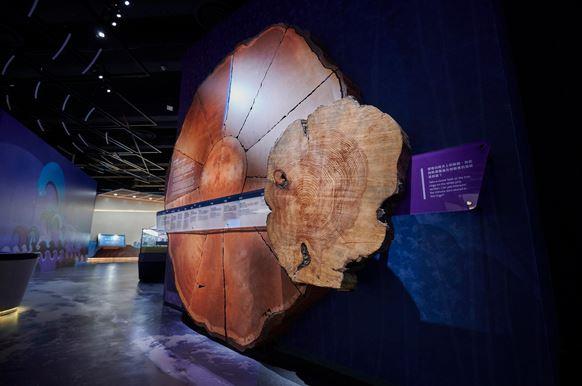 地球科學廳